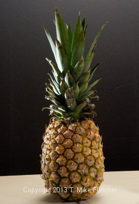 "Pineapple - you can see the ""kicker"" light on the left side"