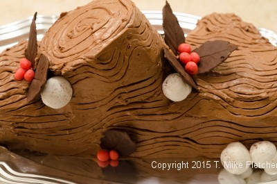 finished-buche-de-noel.jeg