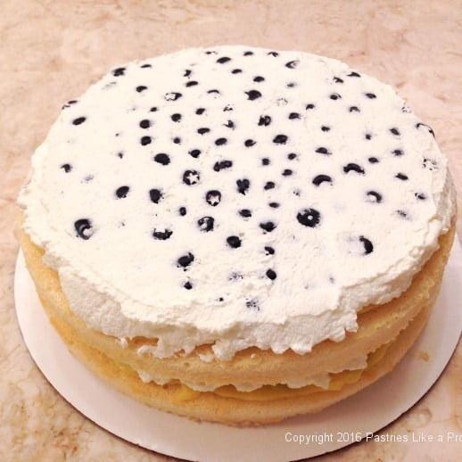 second-layer-finished--for-lemon-blueberry-cake.jpeg
