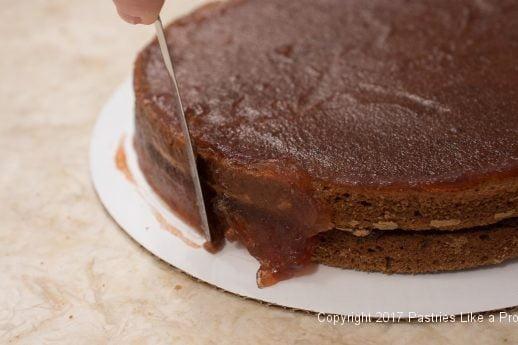 Raspberries on sides of cake for the Chocolate Raspberry Marizian Gateau